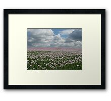 Thundery Poppies Framed Print