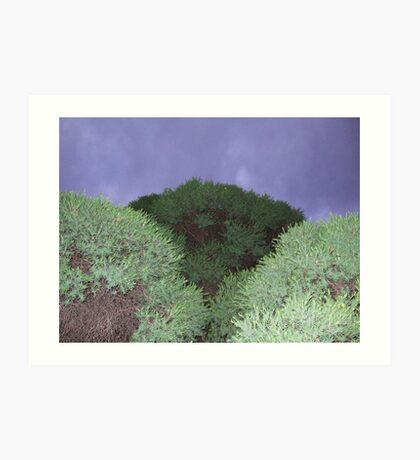 Three greens Art Print
