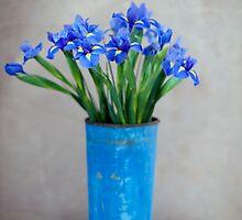 Iris Flower by Antaratma Images