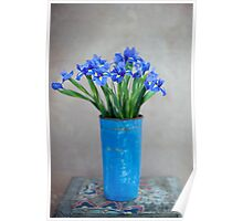 Iris Flower Poster