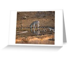 Drinking Zebra Greeting Card