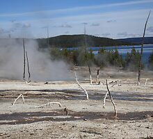 Yellowstone National Park - Hot Springs by Frank Romeo