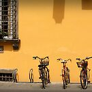 Bicycles Rest Here by sionii