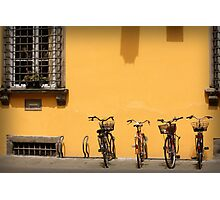 Bicycles Rest Here Photographic Print