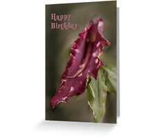 Dragon Arum Birthday Card Greeting Card