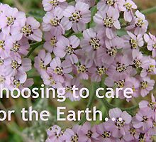 Choosing to care for the Earth. Your choice. by fernenland