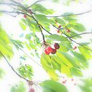 Cherries in the wind by aMOONy