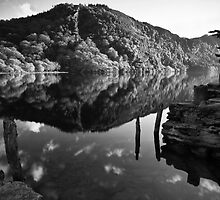 Upper Lake, Glendalough, Co. Wicklow, Ireland by Nigel Bryan
