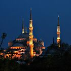 Towers and Minarets by Peter Hammer