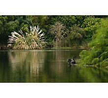 Botanic Garden, Autumn morning Photographic Print