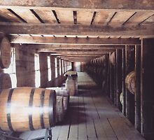 Bourbon Barrels by Elena Celaschi