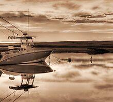The Whaler  by Trevor Murphy