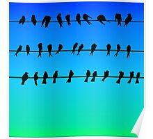 Birds on a Wire No.1 Poster