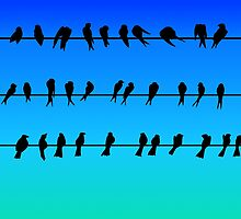 Birds on a Wire No.1 by tee-fury
