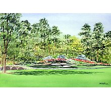 Augusta National Golf Course Photographic Print