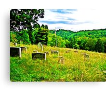 Wade And Water  Canvas Print
