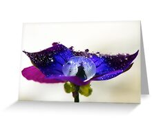 Anemone Stamen Greeting Card