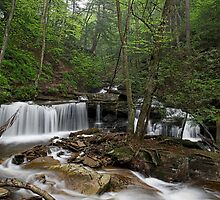 Delaware Falls by Tim Devine