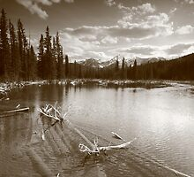 Beaver lake III by zumi