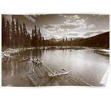 Beaver lake III Poster