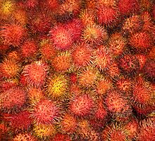 Rambutan - Exotic Fruit by PollyBrown
