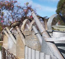 Watering Cans at Wesley Vale by KateGillham