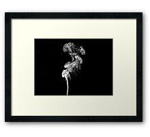 Black and white smoke Framed Print