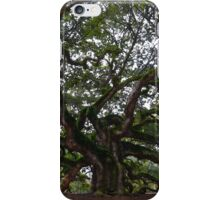 Angel Oak in South Carolina iPhone Case/Skin