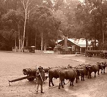 The Bullock Team   by shortshooter-Al