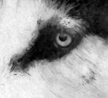 Husky Head Snippet by QUEPCs