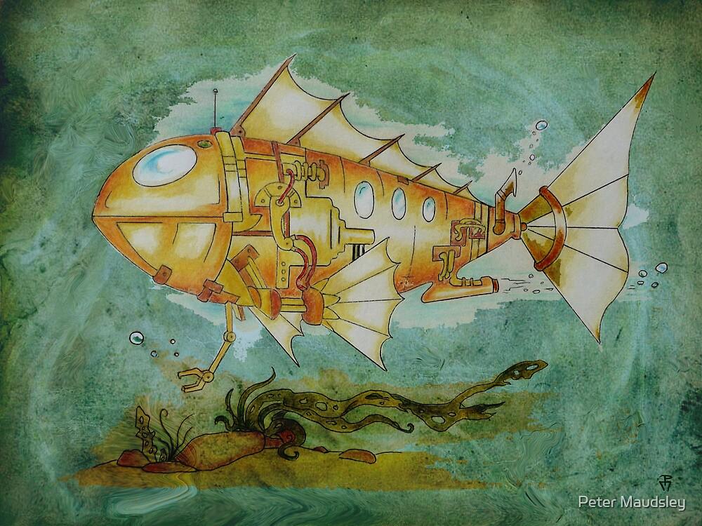 Fish Sub by Peter Maudsley