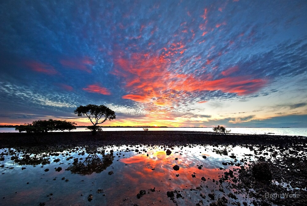 Tidal Twilight - Cleveland Point Qld by Beth  Wode