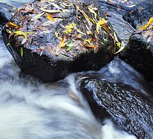 Autumn Rock at the Cascades by Lozzar Landscape