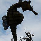 SeaHorse Heaven by DEB CAMERON