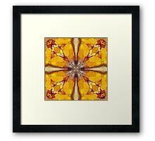 Flakes Of Sunshine Framed Print