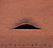 Roof by Celia Strainge
