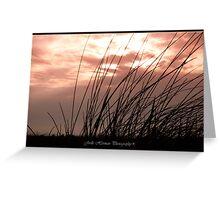 Beach Solitude Greeting Card