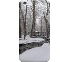 Winter In the Bear Paws iPhone Case/Skin