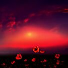 Red Dawn by Igor Zenin