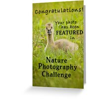 NPC Feature Banner Greeting Card