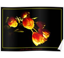 Lightpainted Tulips Poster