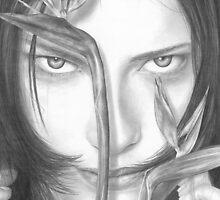 The Illusion by Cynthia Lund Torroll