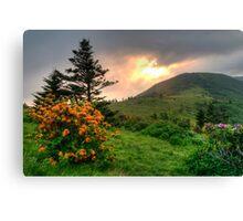 Roan Highlands Morning Canvas Print