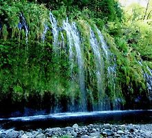Mossbrae Falls by Amy Hallowes