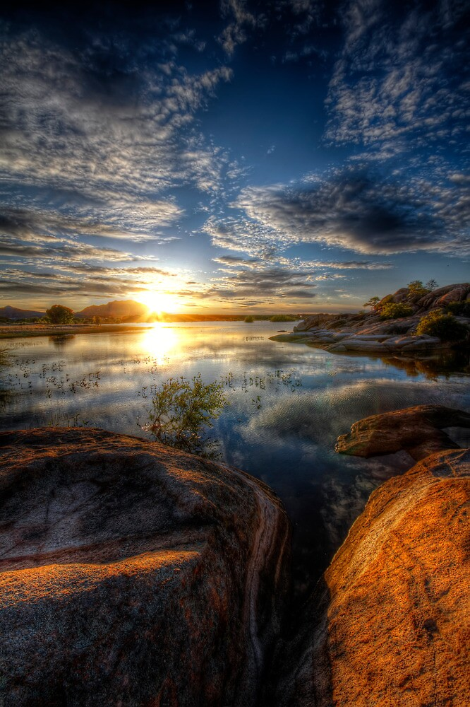 Bright Spot by Bob Larson