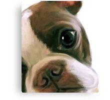 CLoseup Canvas Print