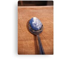 Spoonful Canvas Print