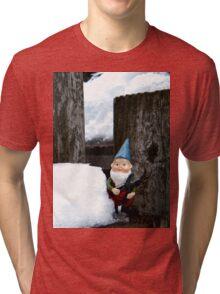 Small Winter Tri-blend T-Shirt