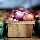 Onions by OughtToBeShot