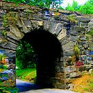 Stone Bridge No. 2 by Debbie Robbins